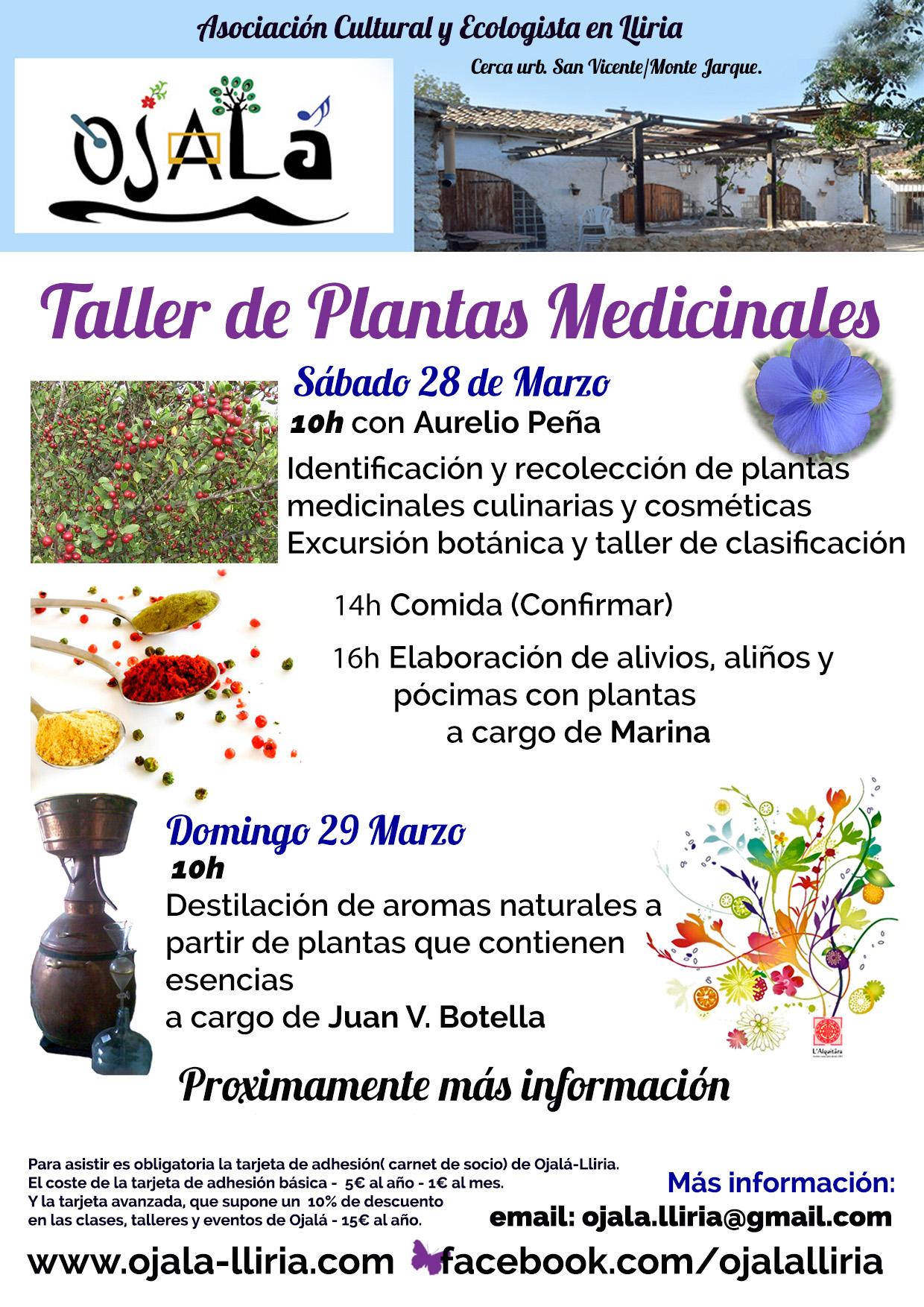 Taller de Plantas Medicinales en Ojalá – Asociación Cultural y Ecologista en Lliria -Valencia