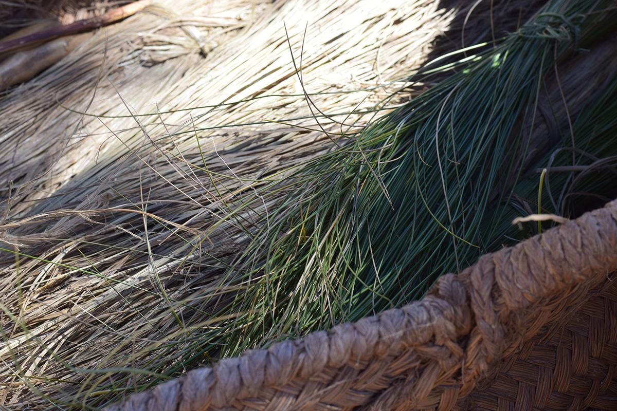 esparto verde
