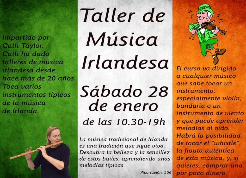 irish music workshop vlag small