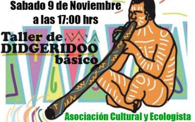 Taller de Didgeridoo Sábado 9 de noviembre